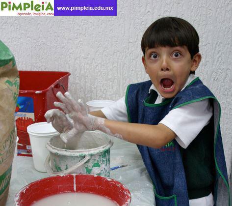pimpleia_1b